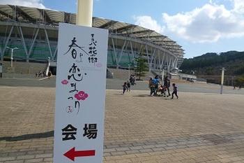 エコパ花の郷 春よ恋まつり 2014